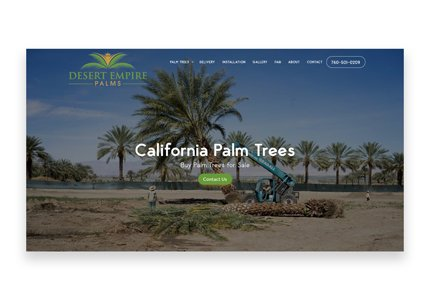 desert empire palms project